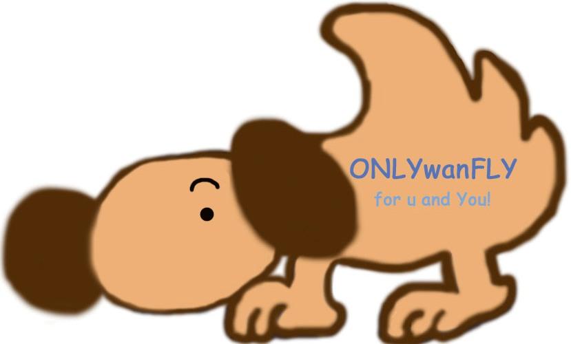 flydogのコピー.jpg